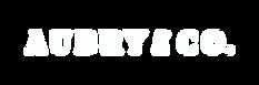 logosmall3 copywhite.png