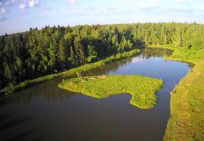 Берег озера Ваньково. Рыбалка в Подмосковье