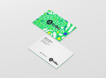 Agence-Tribu-WOOPStudio-8.jpg