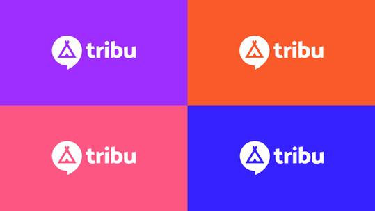 Agence-Tribu-WOOPStudio-2.jpg
