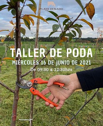 Taller%20de%20poda_edited.jpg