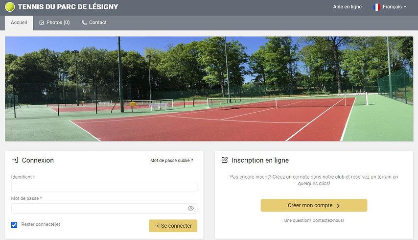tennis balle jaune.JPG
