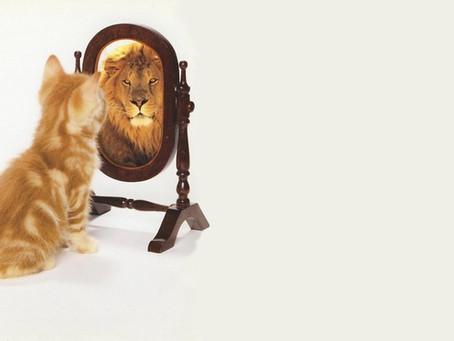 Being self aware