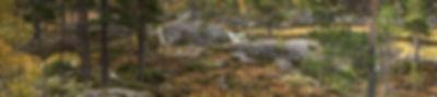 15 Ad Voss - Stora Sjofjallet.jpg