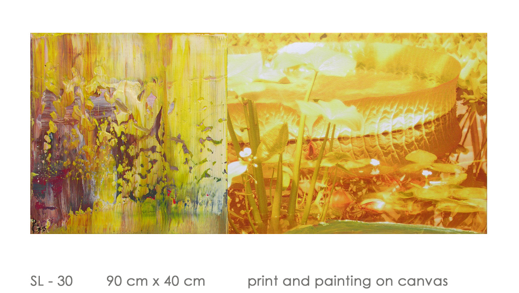 SL - 30 90 cm x 40 cm  print and painting on canvas