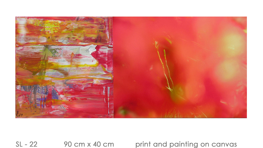 SL - 22 90 cm x 40 cm  print and painting on canvas