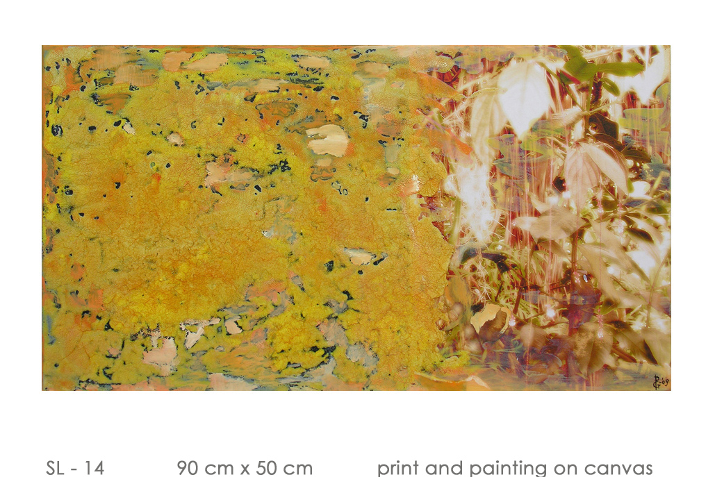 SL - 14 90 cm x 50 cm  print and painting on canvas