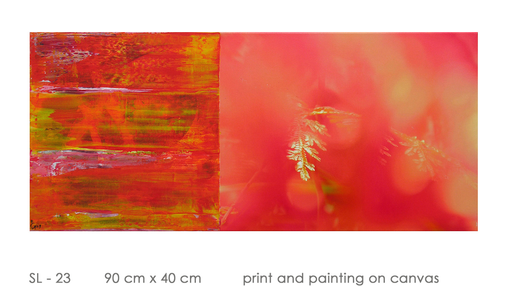SL - 23 90 cm x 40 cm  print and painting on canvas