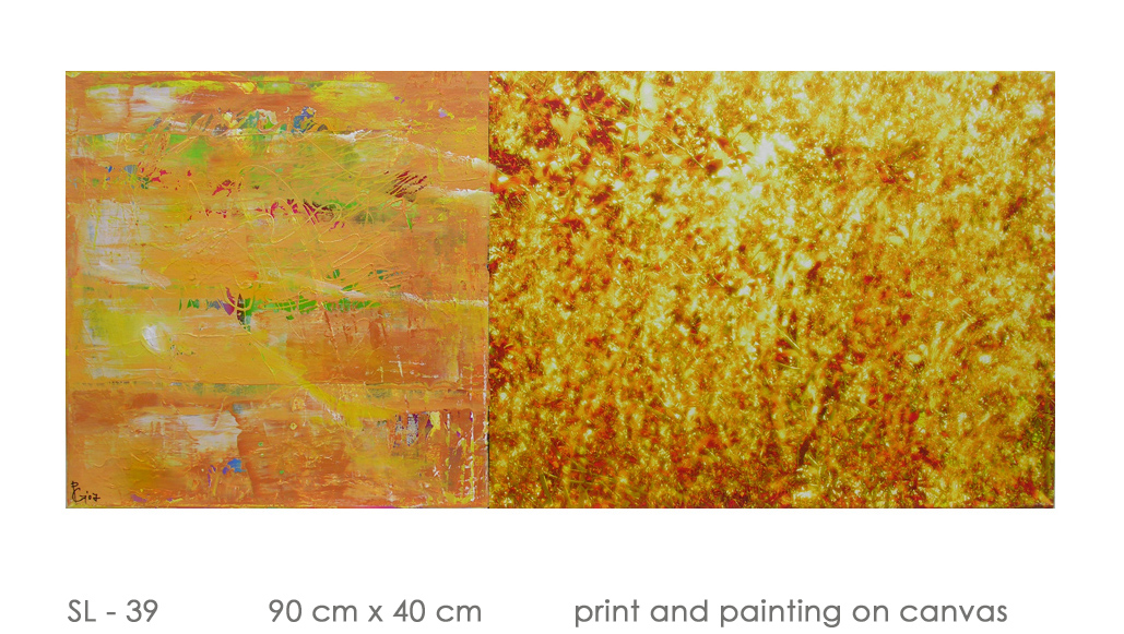 SL - 39 90 cm x 40 cm  print and painting on canvas