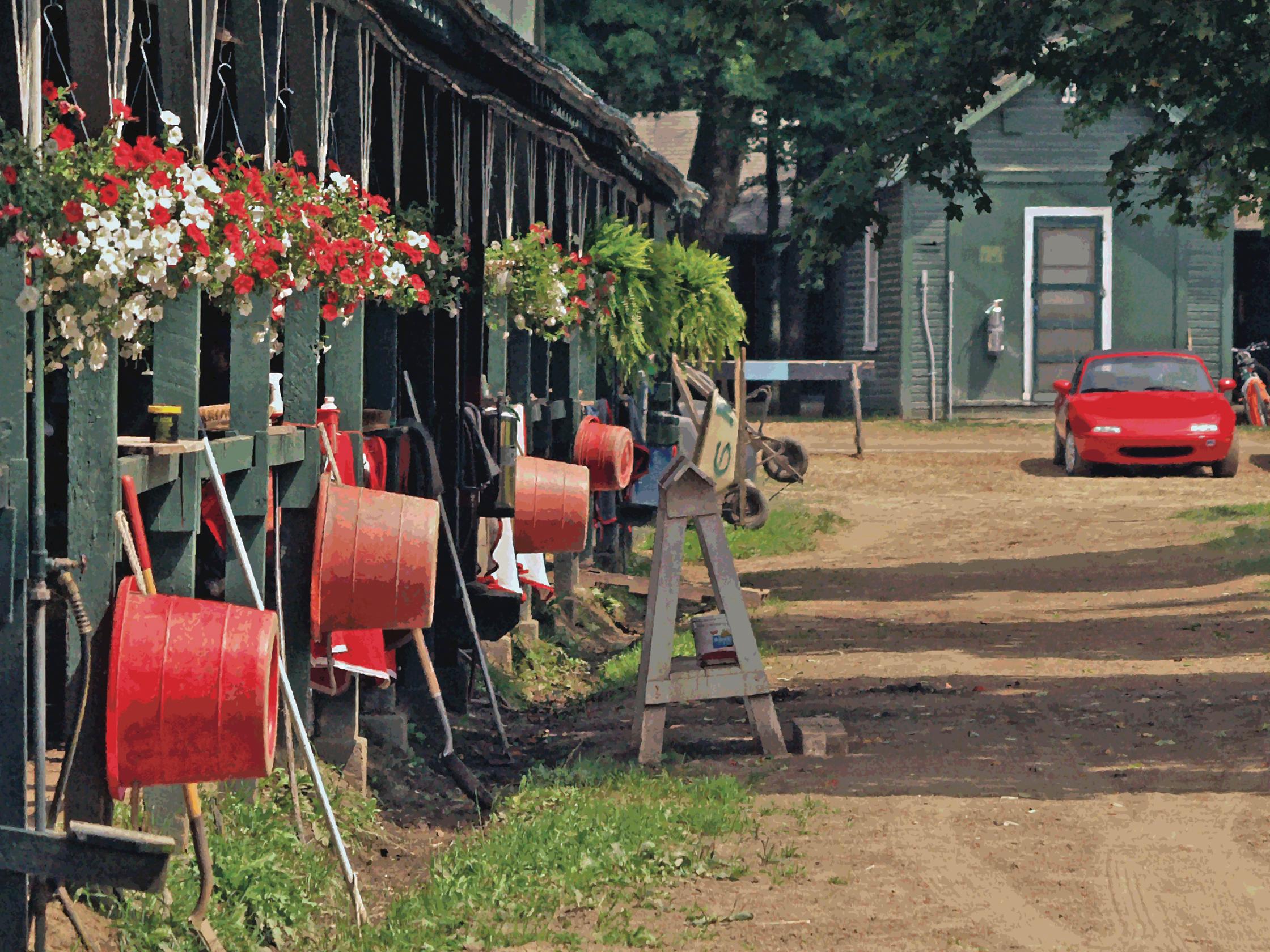 Saratoga Reds