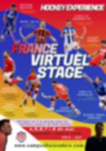 flyer stage virtuel france.jpg
