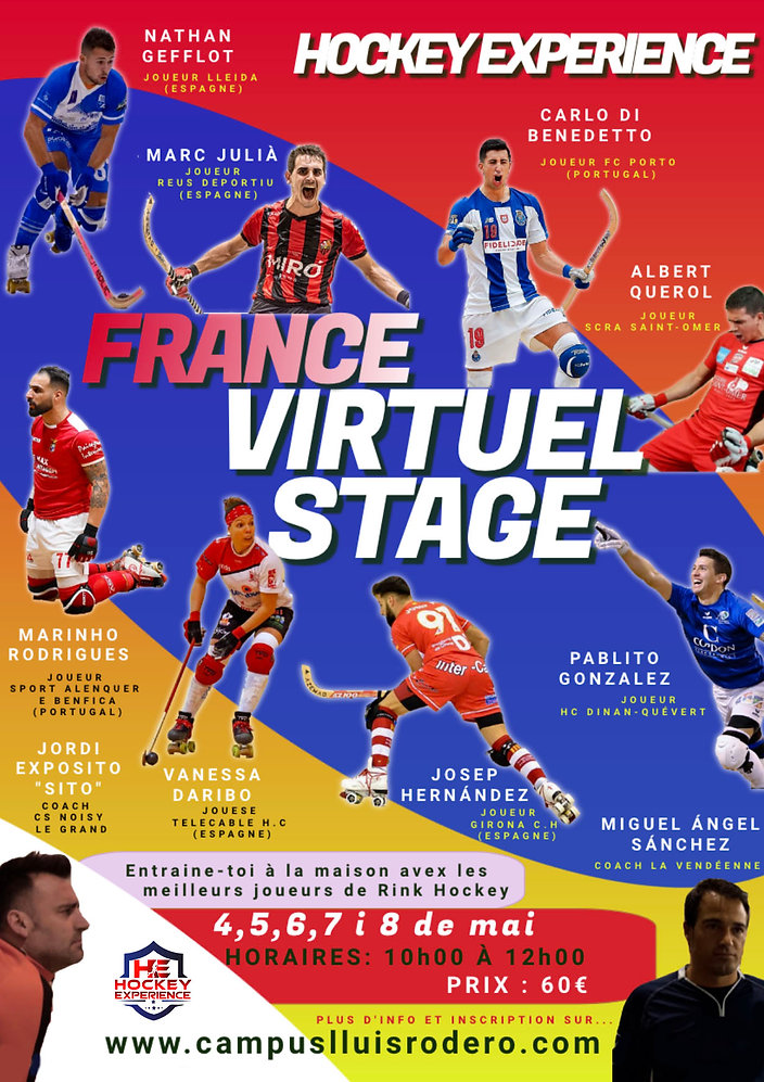 flyer stage virtuel france.jpg