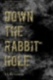 Down the Rabbit Hole Temporary cover.jpg