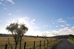 附近景點:墾丁牧場