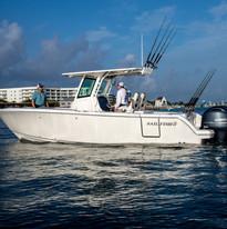272CC Sailfish Stock Photo at Coastal Ma