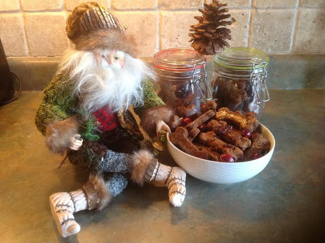 Santa's doggy cookies.jpg