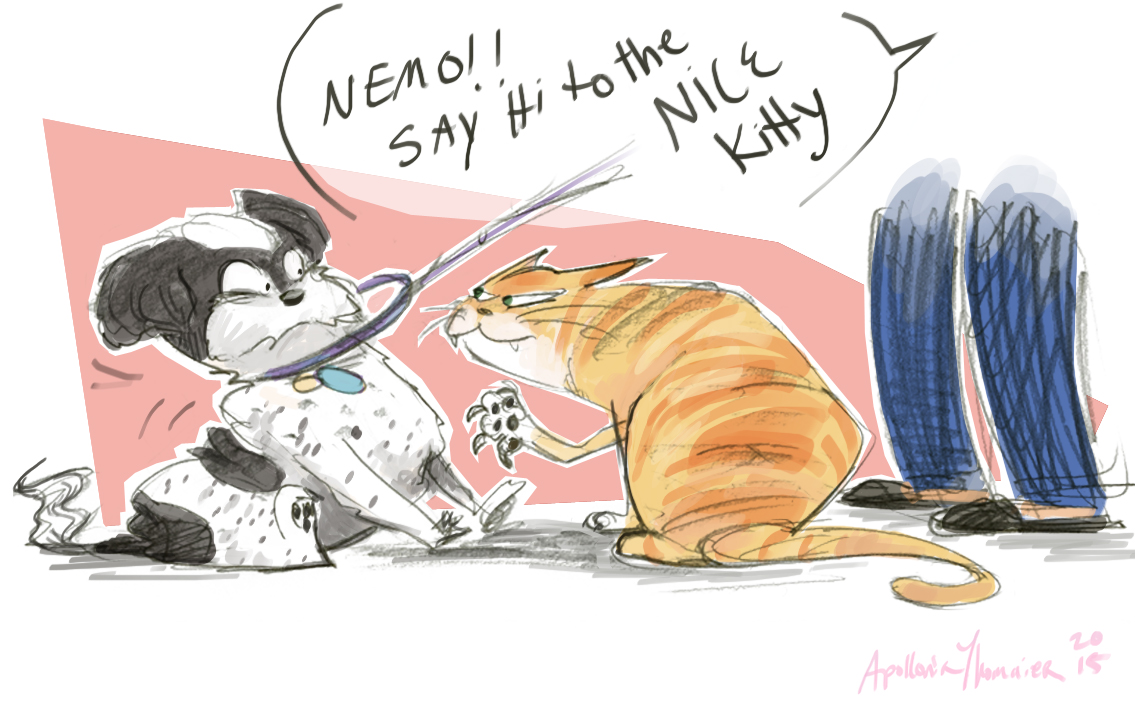 Nemo and Cats