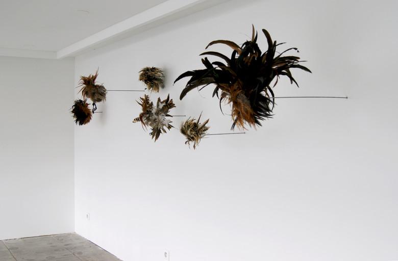 Oiseaux abstraits.