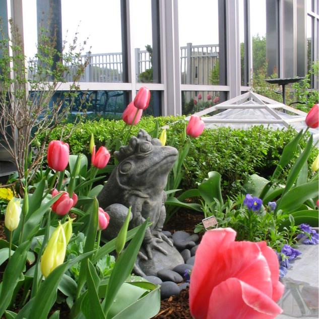 NICU Gardens