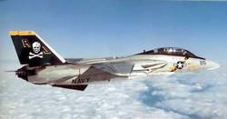 F-14-vf-84 image wikimedia.jpg