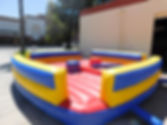 Inflatable_Joust.jpg