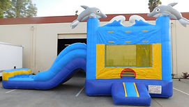 Dolphin_Combo_Jumper_and_Slide.jpg