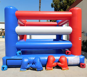 Boxing Ring with Gloves and face masks_.