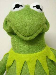 Kermit is not amused.