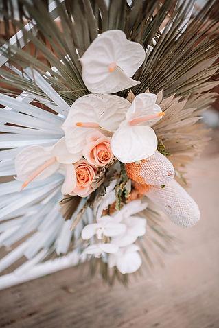 Backdrop droogbloemen - SamDerksenFotogr