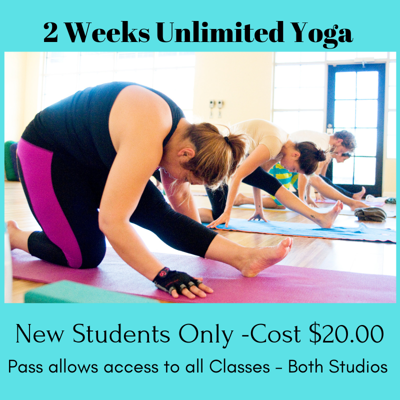 2 Weeks Unlimited $20 Flyer_edited.png