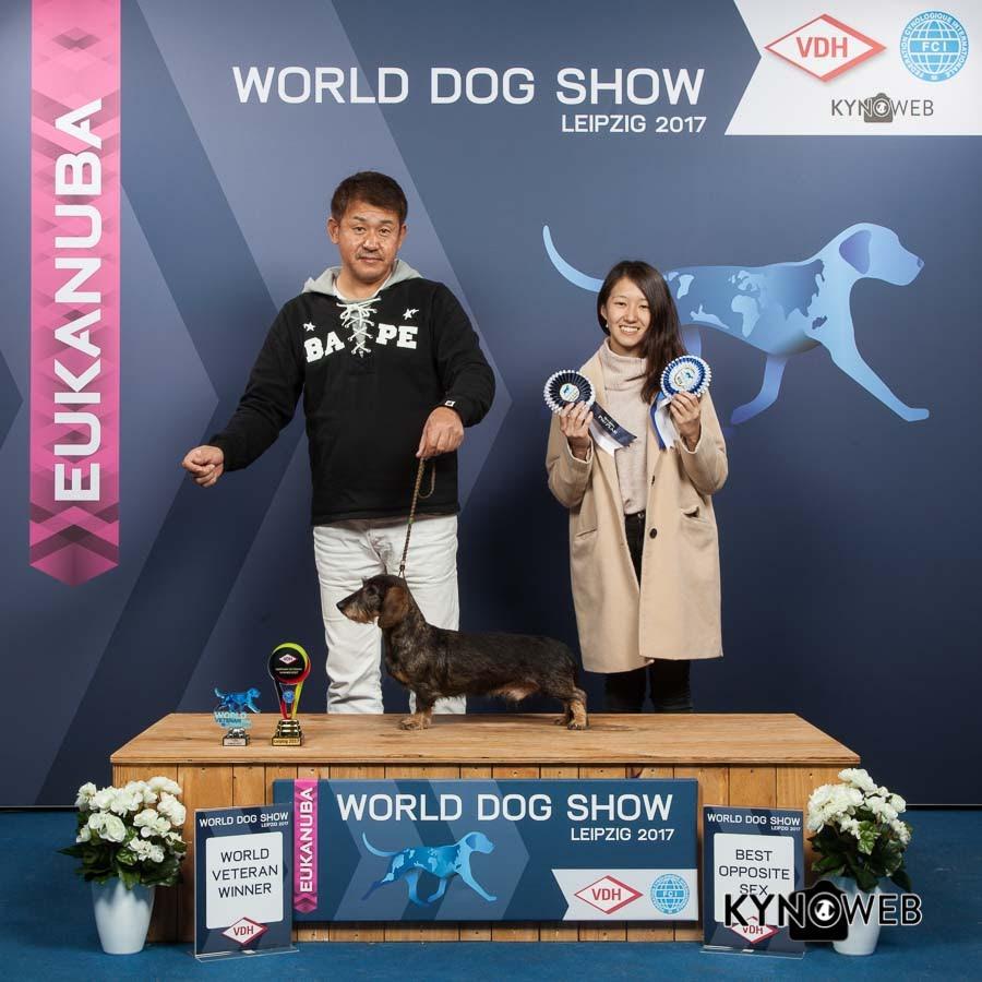 WORLD_DOG_SHOW_2017_Kynoweb_Kynoweb-Ernst-von-Scheven_20171110_15_20_31