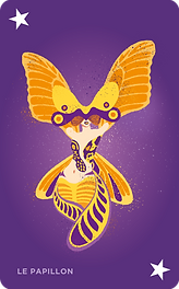 Papillon_O.png