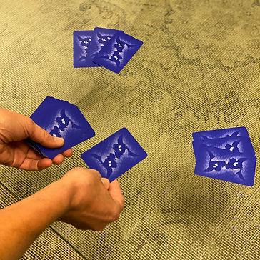PAPILLON_jeu de cartes-Distribuez Bleu.j