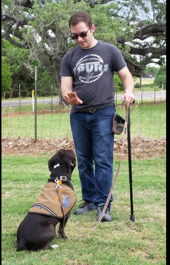 Zoid in training