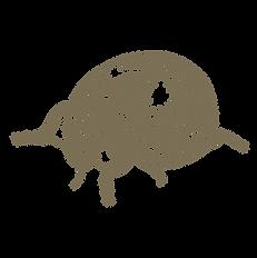 LadyBug_Logo_Final-10.png