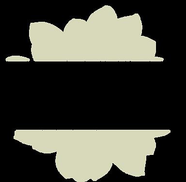 LadyBug_Logo_Final-08.png