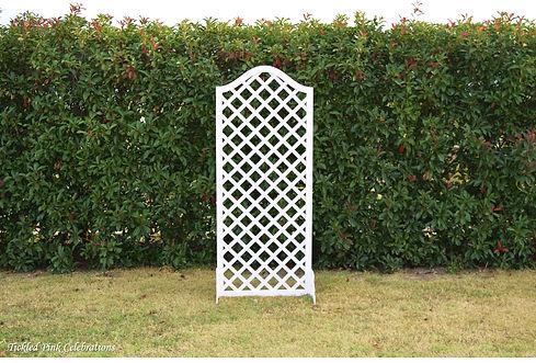 Trellis frame white.jpg