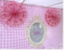 Princess Party backdrop baroque frame-wa