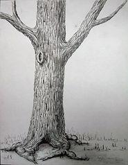 L'arbre - Dessin aux crayons graphites - Défi 90 min.