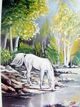 L'étalon sauvage - Peinture à l'huile