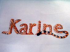 Nom dessiné sur une taie d'oreiller, pour une personne qui aime les tigres - Peinture acrylique