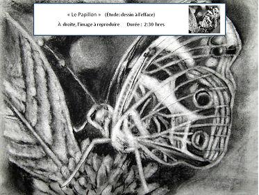 Le Papillon - Dessiner à l'efface