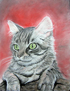 Le Chat - Pastels secs