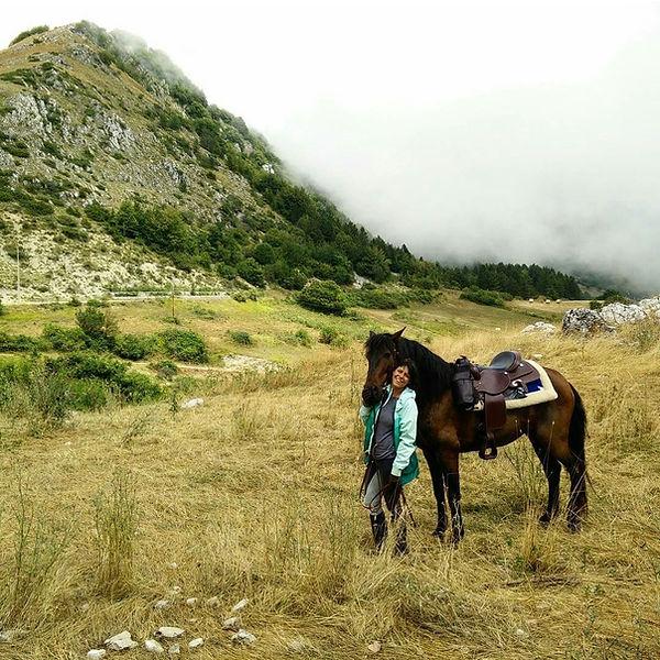 Charlotte Horseback Riding Domlomites