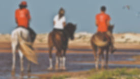 cape verde sal horse riding excursions stables