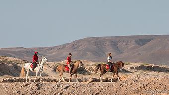 cape verde sal horse riding excursions stables