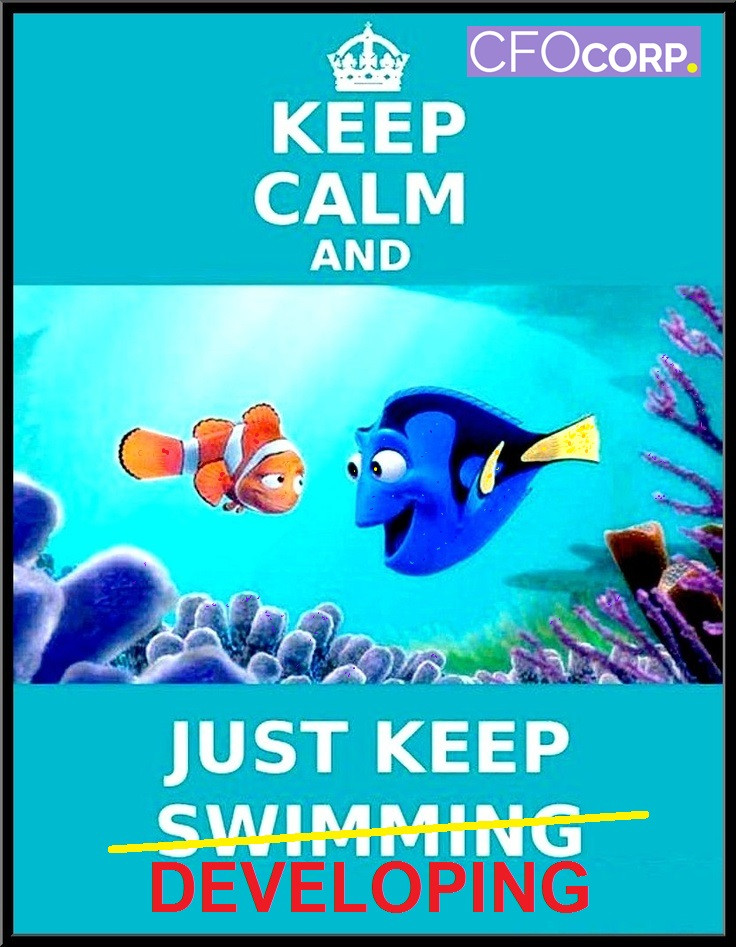 Startup Success, Dory, Keep Calm and Just Keep developing, Chief Financial Officer, CFO CORP, Entrepreneur, Make profit your goal
