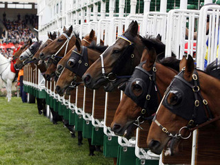 Dingle Horse Racing Festival taking place this weekend