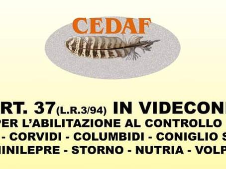 ART. 37: AL VIA IL PRIMO CORSO IN MODALITA' VIDEOCONFERENZA