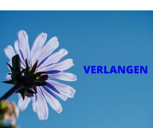 Blog- Verlangen   Ouderen Begeleiding Zeeland